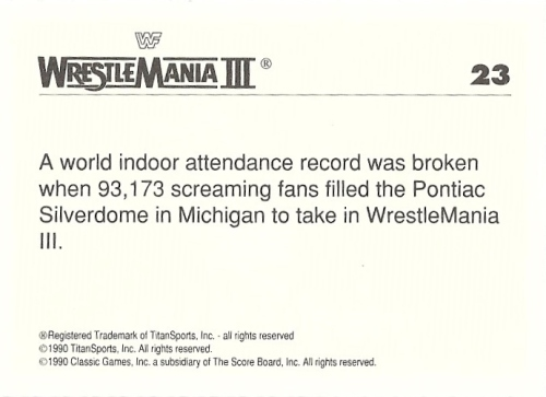 wrestlemania23back
