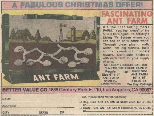 ant farm cross-section